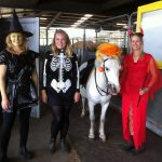 Fancy Dress at Showgrounds Equestrian Centre
