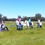 Fun in the Country at Oakford Equestrian