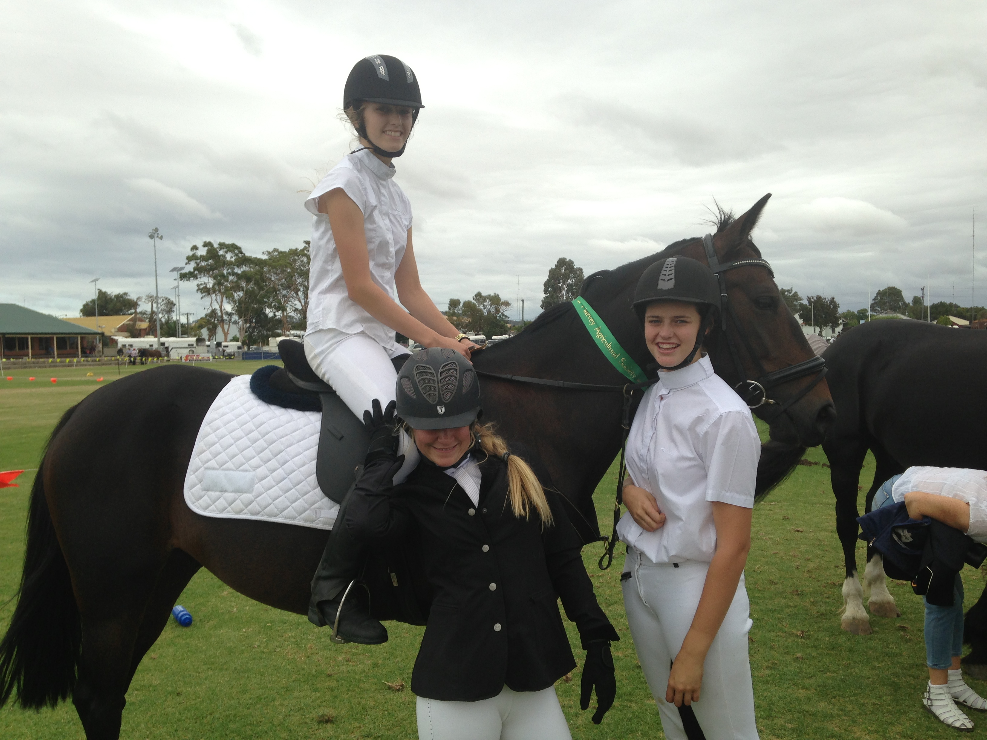 Photo Gallery Showgrounds Equestrian Centre